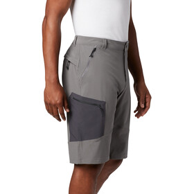 Columbia Triple Canyon Shorts 10'' Homme, city grey/shark